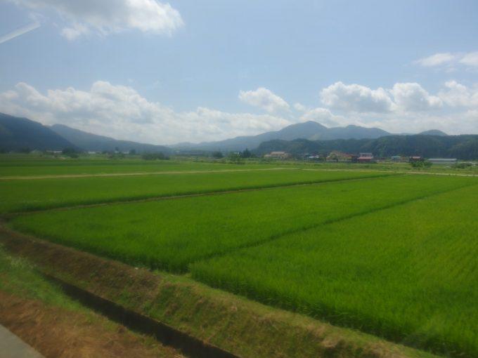 陸羽東線の車窓を彩る山形夏の田んぼ