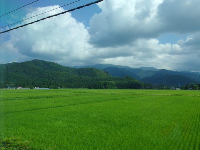 秋田新幹線車窓に広がる夏の緑の田んぼ