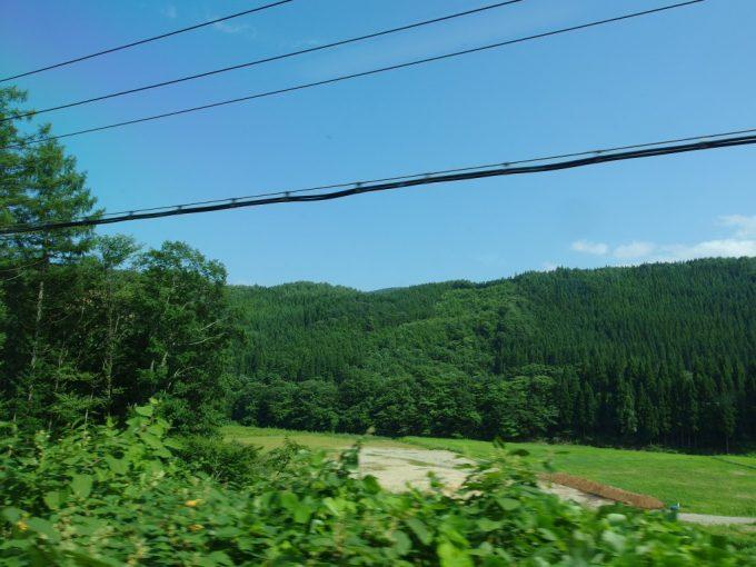 こまちから眺める秋田杉の美林