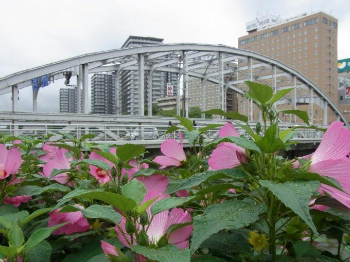 花に彩られる盛岡開運橋