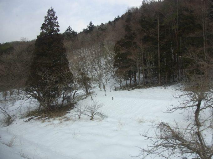 野岩鉄道車窓を彩る雪景色