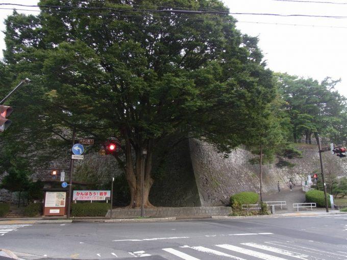初秋の岩手公園