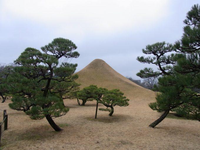 熊本水前寺公園富士と松