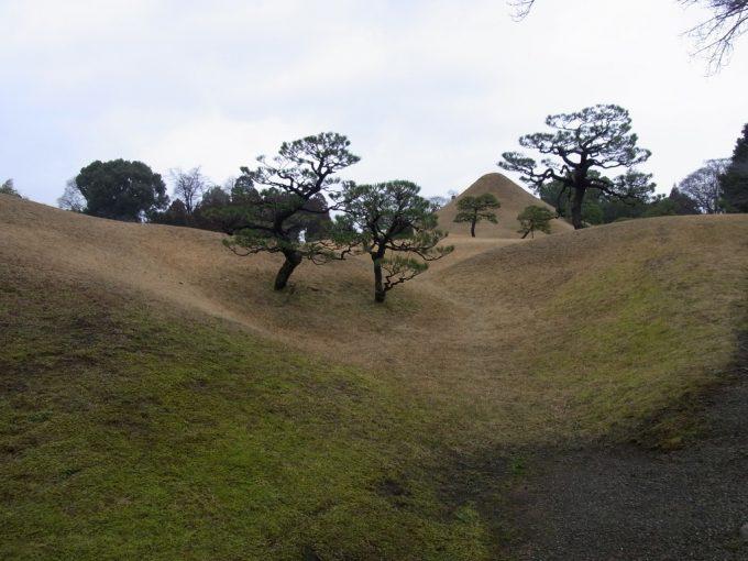 冬枯れの芝と富士と松
