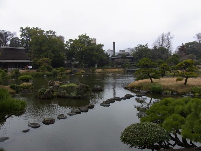 熊本水前寺公園池と松