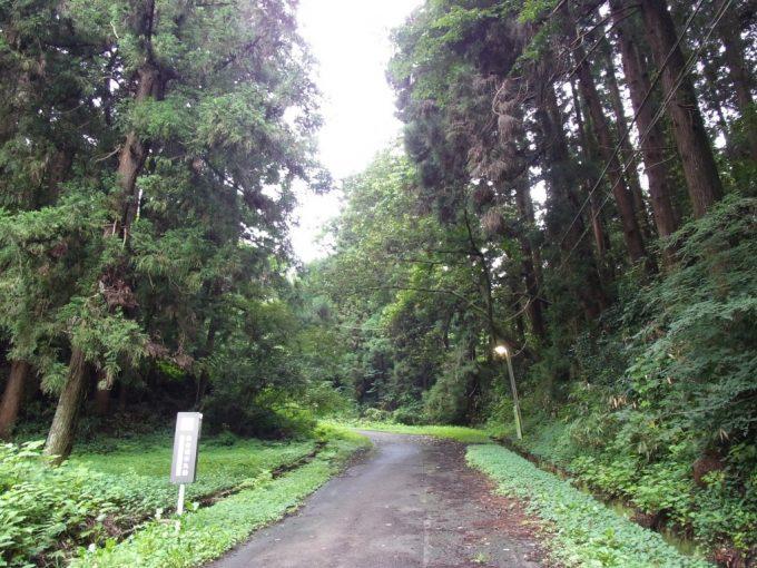 森深き仙台城跡への道