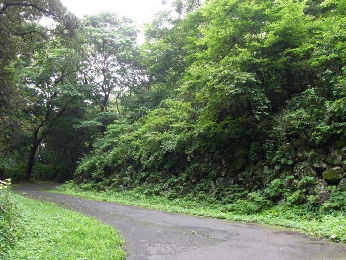 苔むす仙台城跡石垣