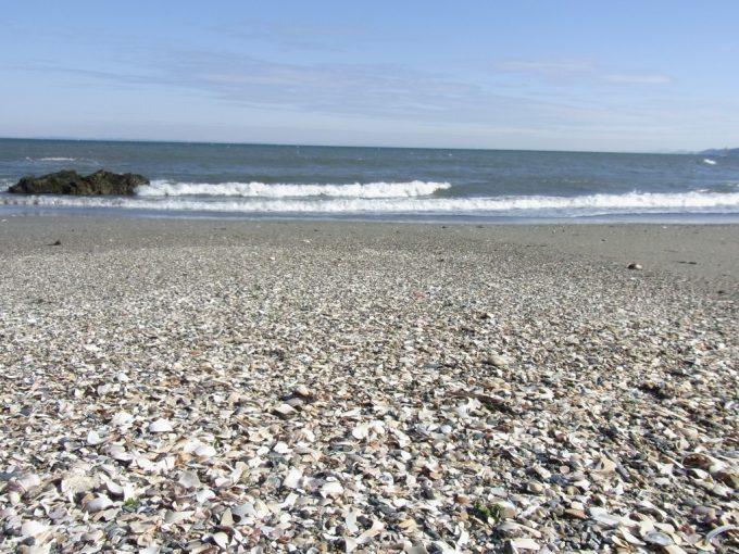 冬の二見浦白い浜と青い海