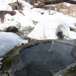 二岐温泉柏屋旅館雪に埋もれる露天風呂