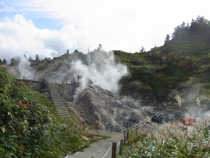 後生掛の広大な噴煙地