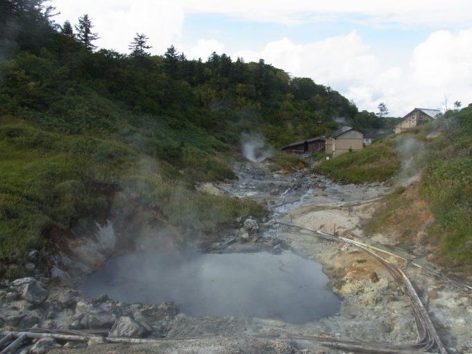 自然の火山博物館後生掛自然研究路