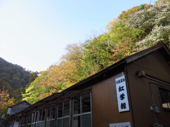 秋の秘湯夏油温泉元湯鮮やかな紅葉