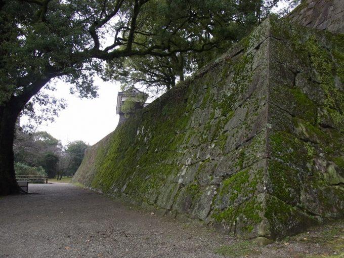 熊本城苔むす石垣