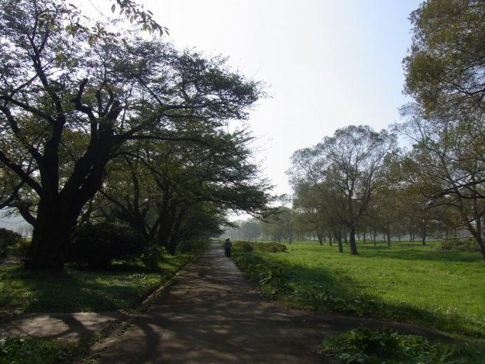 秋色の北上川河原