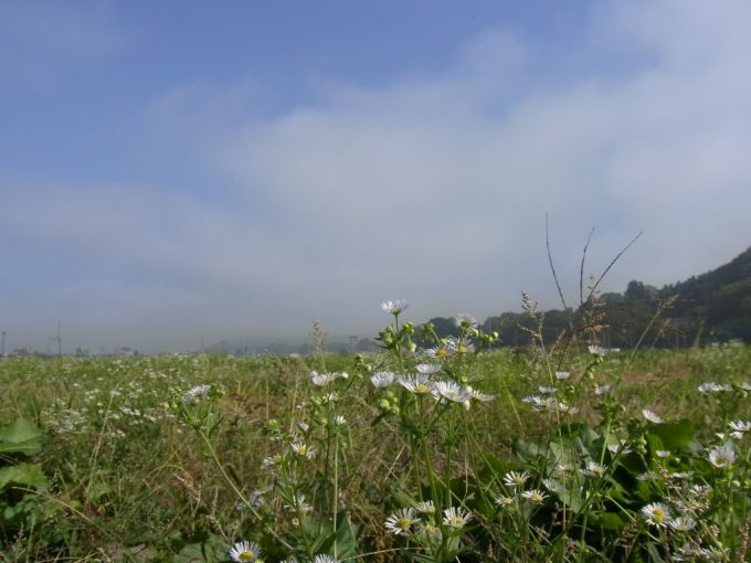 秋の北上儚く消える朝霧