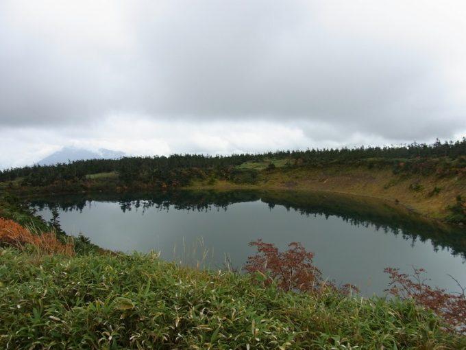 秋の八幡平ガマ沼