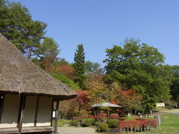 北上みちのく民俗村曲り屋の茅葺屋根と紅葉