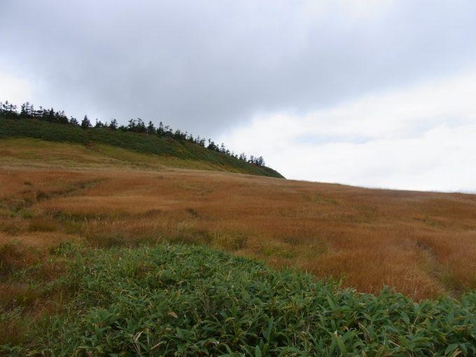秋の八幡平草紅葉のグラデーションに包まれる山肌
