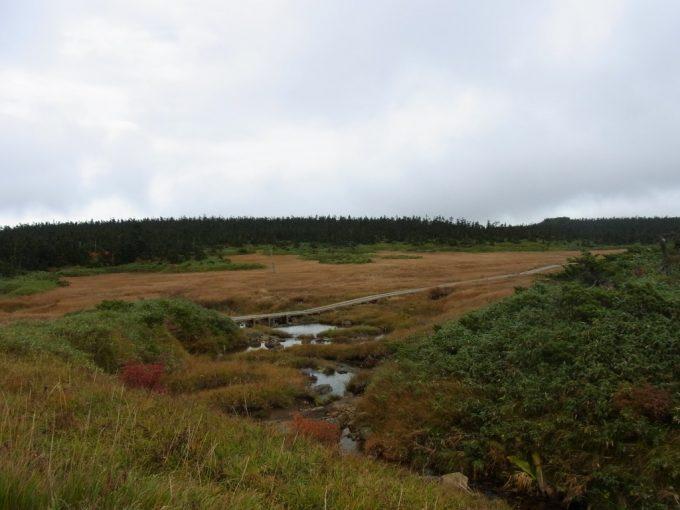 秋の八幡平草紅葉の中を流れる小川