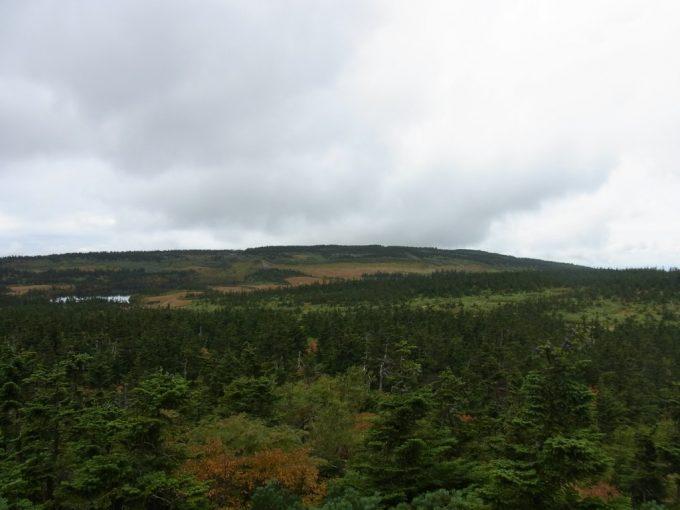 秋に彩られる八幡平