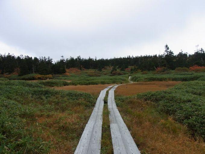 秋の八幡沼散策