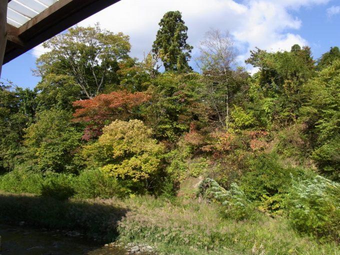 鉛温泉藤三旅館桂の湯露天風呂から眺める豊沢川と紅葉