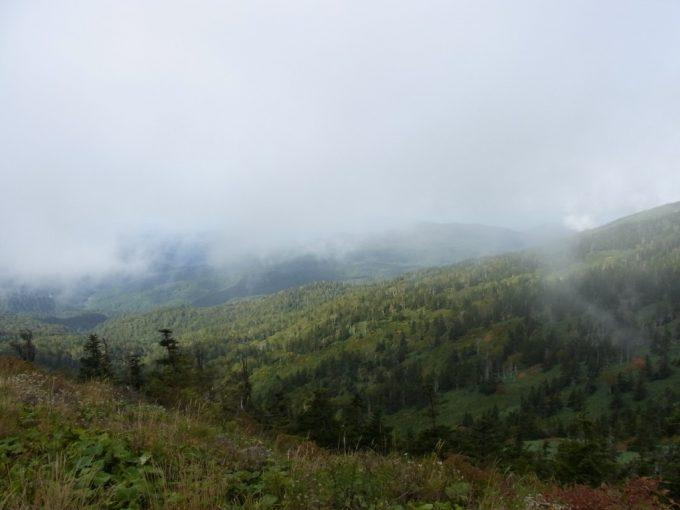 八幡平を霧が包む