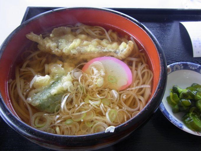 田沢湖共栄パレスハタハタの天ぷら入り稲庭うどん