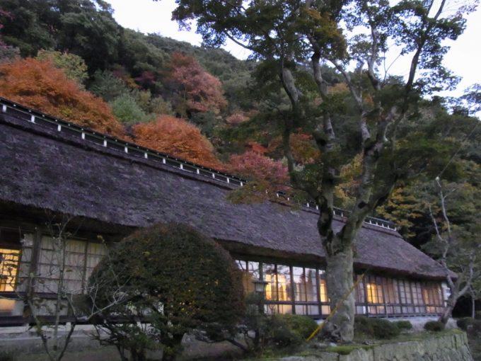 茅葺屋根と色づく木々秋の夕暮れ