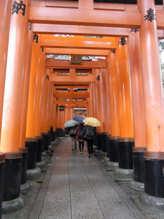 冬の京都伏見稲荷大社無数に並ぶ赤鳥居