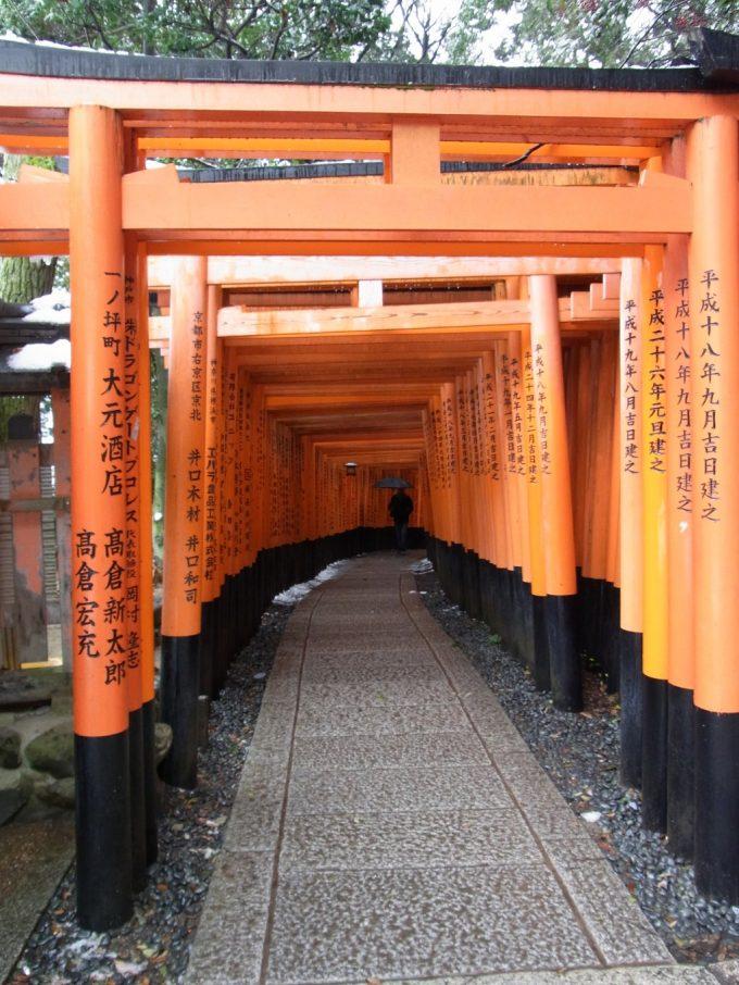 冬の京都伏見稲荷大社千本鳥居