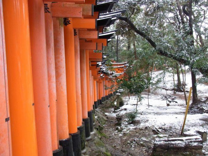 冬の京都伏見稲荷大社雪と赤鳥居奇跡の競演
