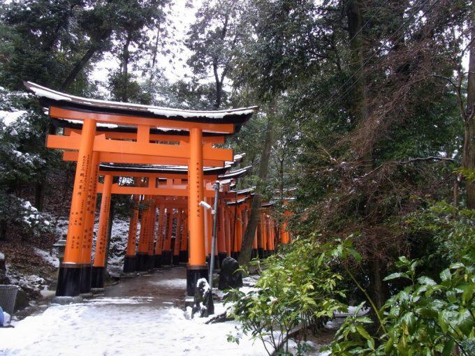 冬の京都伏見稲荷大社山の奥深くまで続く朱塗りの鳥居