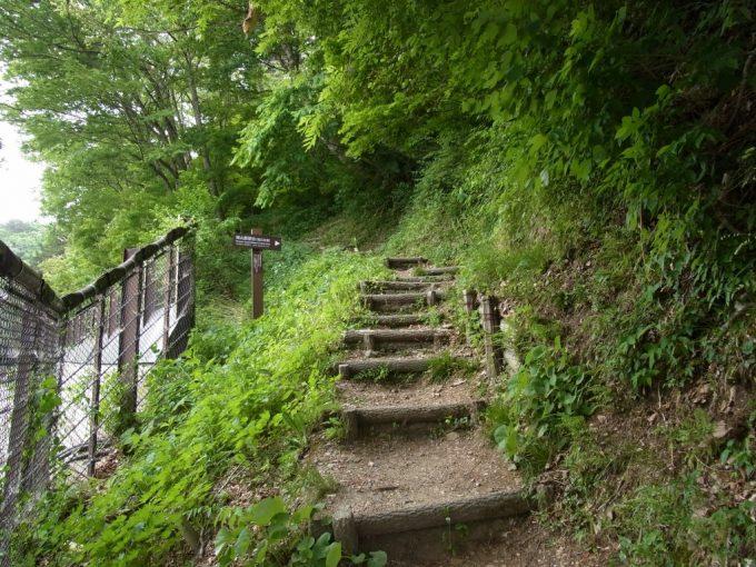 白川郷荻町城跡城山展望台への登山道