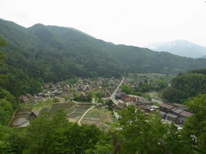 荻町城跡城山展望台から眺める初夏の白川郷合掌造り集落