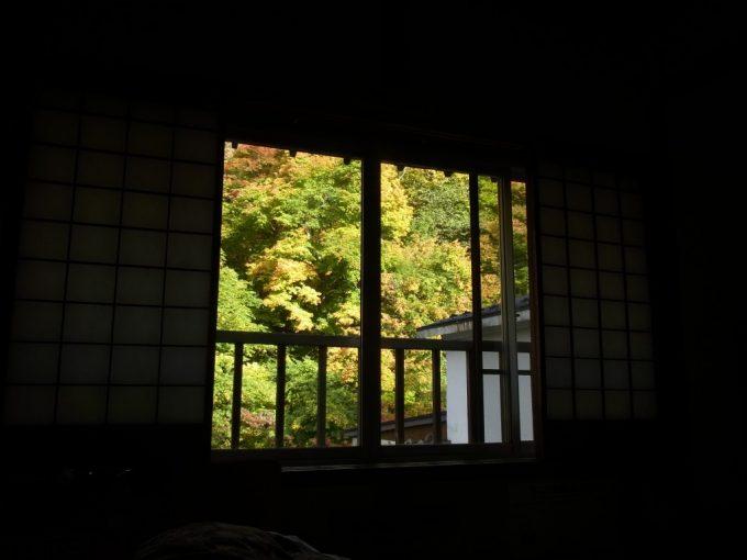 大沢温泉自炊部燃える紅葉秋の色