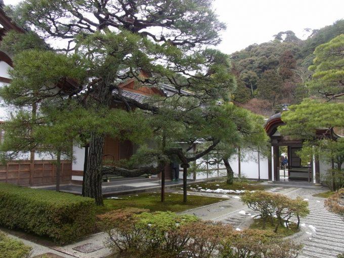冬の京都雨の銀閣寺しっとりとした庭
