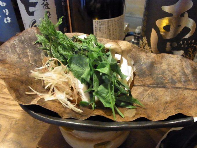 飛騨高山飛騨の味酒菜朴葉味噌山菜入り