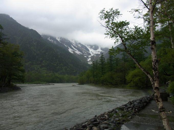初夏の雨の上高地河童橋から上流へ