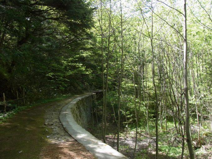 信州秘湯中房温泉林鉄跡のようなカーブする道