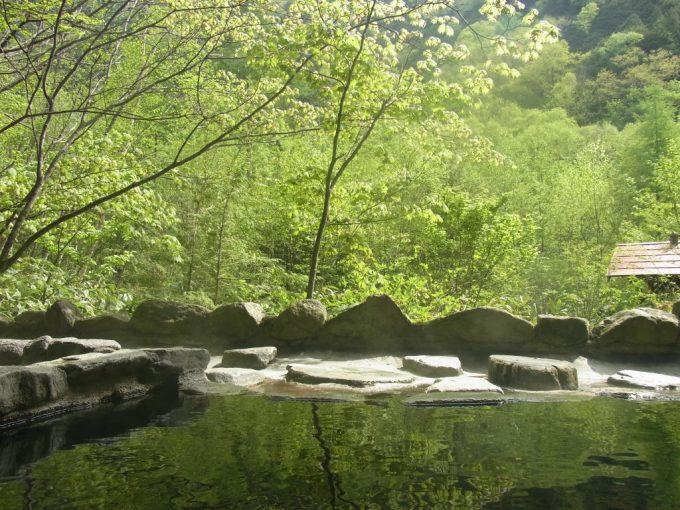 朝の光と初夏の緑に包まれる秘湯中房温泉白滝の湯
