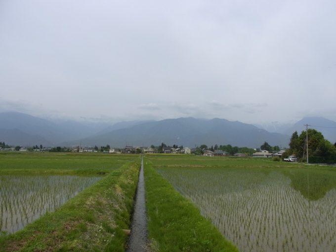 安曇野サイクリング田んぼに映る信州の山