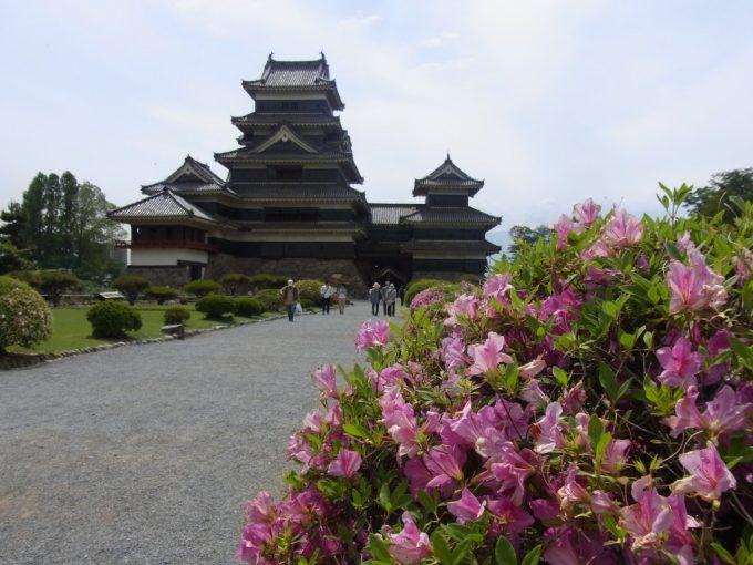 つつじと国宝松本城