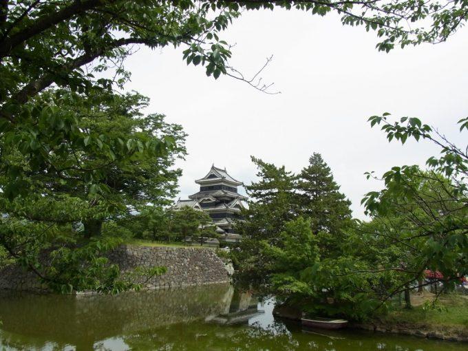 梅雨時の緑と松本城