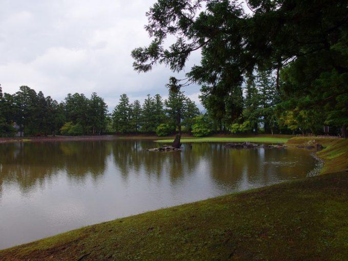 雨に濡れ緑の濃い夏の毛越寺大泉ヶ池