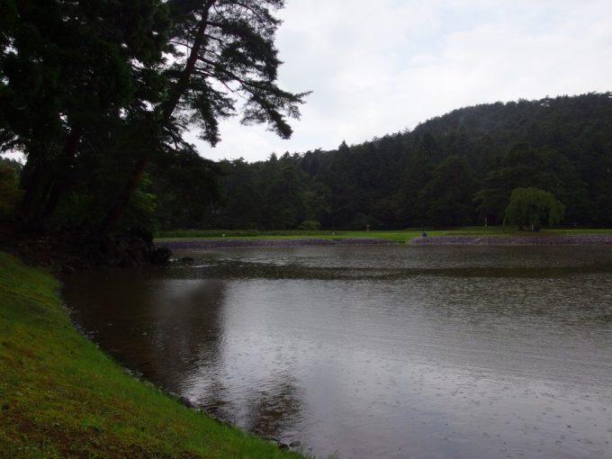 雨に打たれさざ波のたつ毛越寺大泉ヶ池
