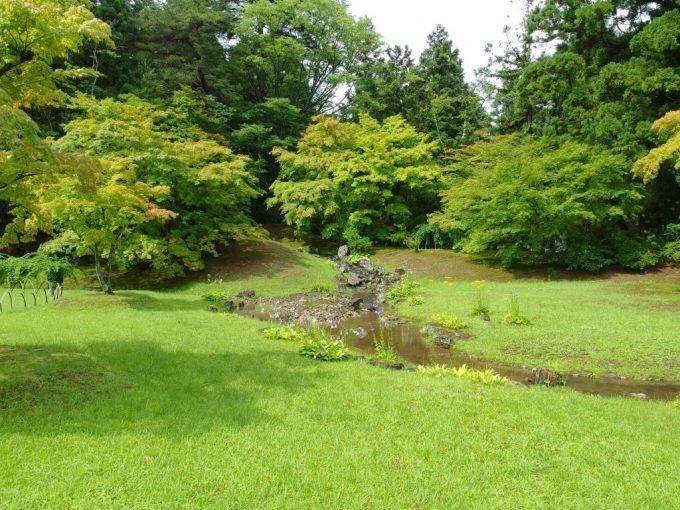 雨上がり夏の毛越寺活き活きとした芝生と曲水