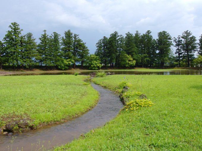 夏の毛越寺大泉ヶ池を潤す曲水