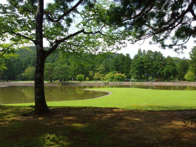 夏の毛越寺大泉ヶ池木陰に映える洲浜