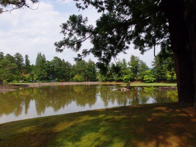 夏空に照らされる毛越寺大泉ヶ池